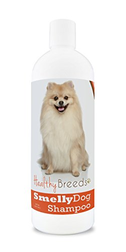 Healthy Breeds Smelly Dog Deodorizing Shampoo & Conditioner with Baking Soda for Pomeranian - Over 200 Breeds - 8 oz - Hypoallergenic for Sensitive Skin