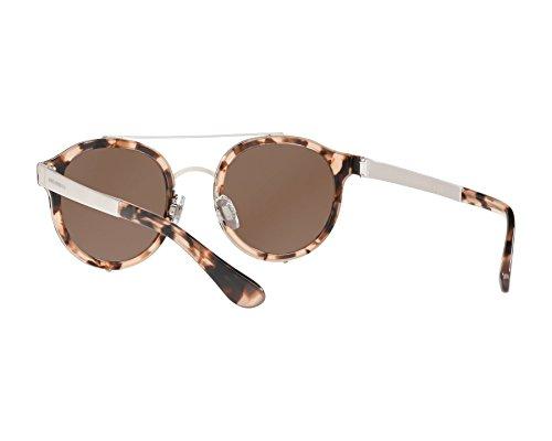 Marron amp; Nude Dolce Havana DG2184 Gabbana Brown Sonnenbrille ICxxpq1d