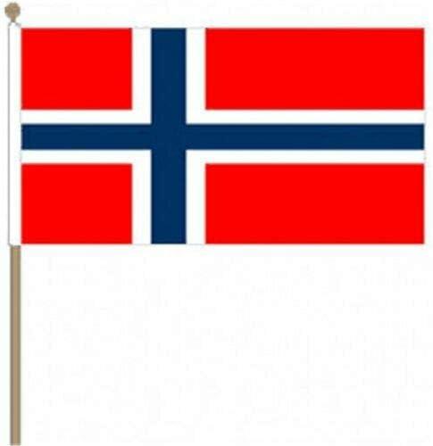 Flagmania® 12 Stück Norwegen 30,5 x 45,7 cm große Handwinkel-Flaggen + 59 mm Button Badge