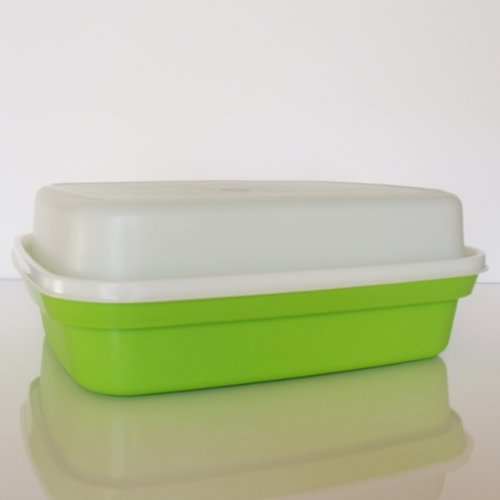 Tupperware Large Season Serve Container Lime