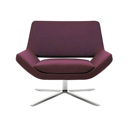 Amazon.com: HONGSHENG Modern Style Simple Single Fabric Sofa