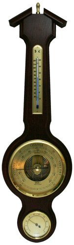 - Ambient Weather 4673-22 Fischer Instruments Banjo Weather Station with Thermometer/Hygrometer/Barometer