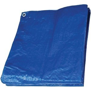 - Hygrade MT1012 10' x 12' Blue Poly Tarp - 18ct. Case