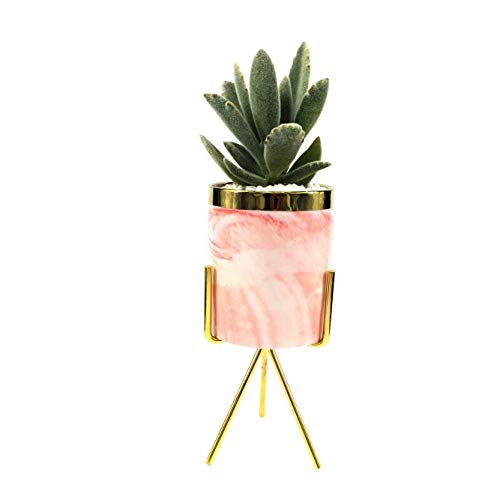 7.5-inch Modern Flower Pot Pink Ceramic Round Plant Pot with Metal Bracket,Mid-Century Small Indoor Plant Stand for/Succulents /Mini Cactus (Pink + Gold) (LY-335 -