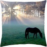 MORNING GLORY - Throw Pillow Cover Case (18