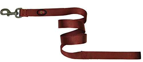 Hamilton 1-Inch Single Thick Nylon Lead with Swivel Snap Brushed Hardware, 6-Feet/Long, Red Brick