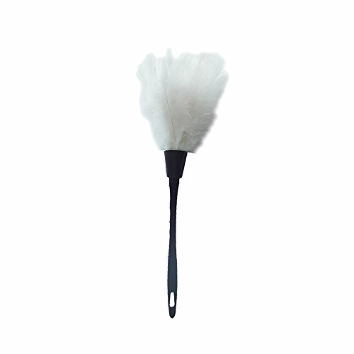 Feather Duster Costume (NUOMI Turkey Feather Duster (White))