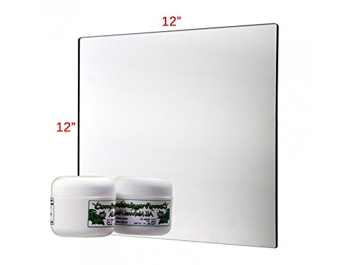 Pkg of 3 Plastic Mirrors with Rounded Corners 12 X 12'' Great for Classroom Activities Horses or Chicken Coop