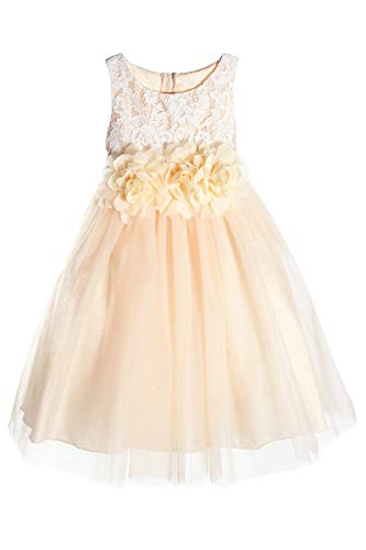 - Baby Girls Champagne Lace Illusion Tulle 3 Mesh Flowers Easter Holiday Flower Girl Dress Size 18 Months
