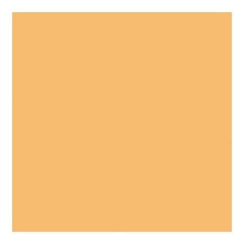 (Rosco Cinegel #3441 Filter, 20x24