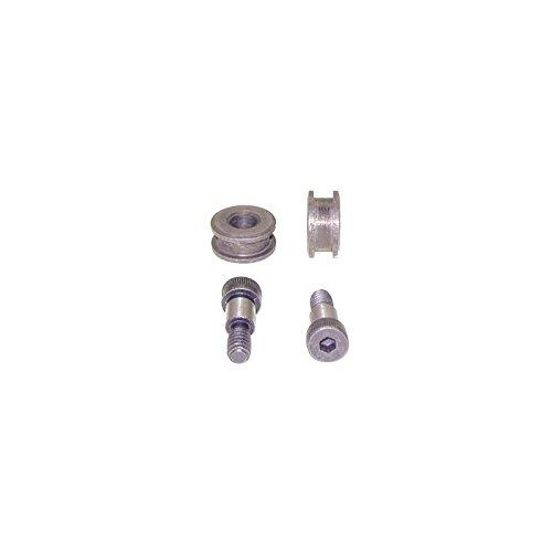 Camaro Door Hinge (Eckler's Premier Quality Products 33-179693 Camaro Door Hinge Roller Detent Repair Kit, Lower,)