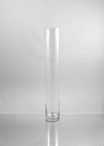 WGV Clear Cylinder Glass Vase, 4 by (Large Glass Cylinder)