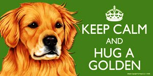 Golden Retriever Dog Gift - 'KEEP CALM' LARGE colourful 4' x 8' MAGNET - High Quality flexible magnet for indoor or outdoor use for your Fridge, Car, Caravan or use on any flat metal surface -Water proof and UV resistant. Car-Pets Ltd