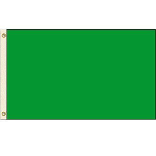 Solid Green 3x5 Nylon Flag by Vista Flags
