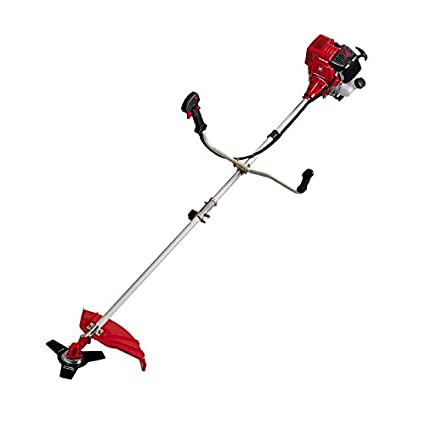 Einhell GC-BC 31-4 S 700W Gasolina Negro, Rojo - Cortacésped (