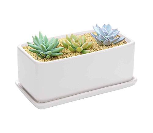 ceramic pot planter 10 - 2