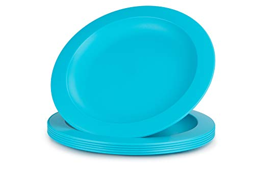 Amuse- Unbreakable and Reusable Plastic Plate Set- BPA Free- Set of 6-9.65 in. (Turquoise)
