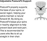 Herman Miller Aeron Chair PostureFit Support Kit