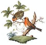 Herend Rothschild Bird Porcelain Tea Saucer Motif