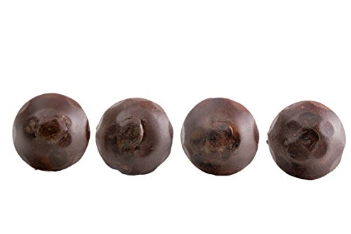 Mexican Rustic Nails - 50 Pack Door Clavos Decorative Nails 1