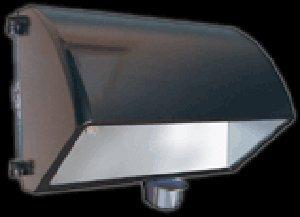 RAB Lighting WP2CF42MS WP2 180 Degree View Smartpack Cutoff Sensor Controlled CFL Wallpack, Triple Type, Aluminum, 42W Power, 3200 Lumens, 277V, Bronze Color