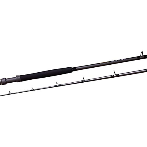Fin Nor FSGS7030 Surge Saltwater Fishing Rods, 7-Feet 0-Inch 20-40-Pound, Grey and Black Surge