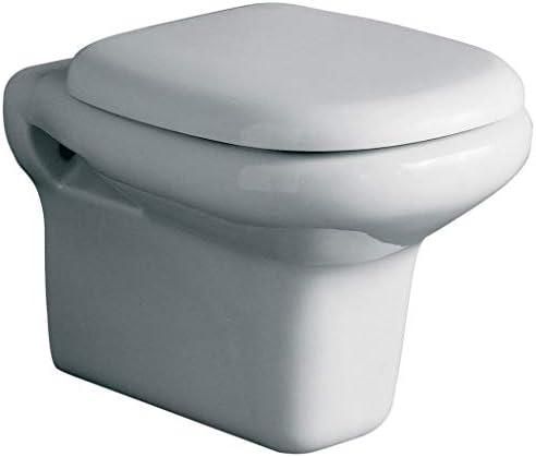 Ideal Standard Tesi Sedile.Ideal Standard T663001 Copriwater Originale Dedicato Serie Tesi Bianco Amazon It Fai Da Te