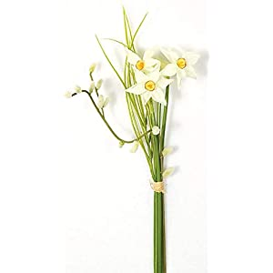 15 Inch Narcissus Flower Bundle Signature Foliage 20