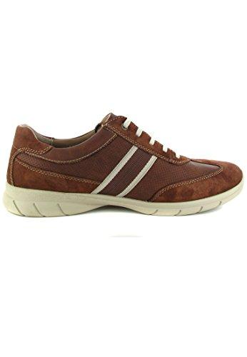 camel active - Zapatos de cordones de Piel para hombre Marrón marrón Marrón - marrón