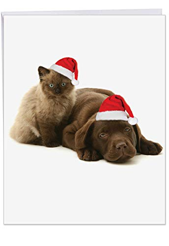 Copy Cats Choc Lab' Jumbo Christmas Card with Envelope 8.5 x 11 Inch - Cute Chocolate Labrador and Himalayan Cat Wearing Santa Hat, Stationery Set for Personalized Happy Holidays Greeting J6596AXSG