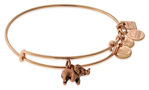Alex and Ani Women's Charity Design Elephant II Bangle Two-Tone One Size