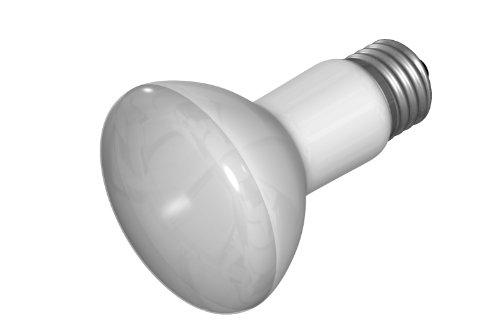50 50 cf bulb - 1