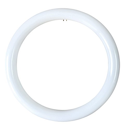 I.F. Phase 5146/B/18  W LED Tube Circular T9  6500º k 18  W, White Light I.F. FASE 5146/B/18W