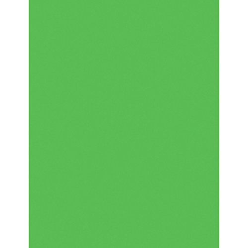 Neon Bond Paper, 24 lb, 100 Sheets, 8-1/2quot;x11quot, Neon Green, Sold as 1 Package