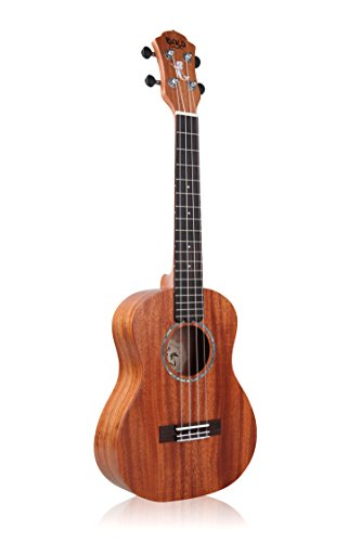 Ukulele Nalu Concert N-530C Solid Mahogany Top with Gig Bag, Spare Aquila (Mahogany Top)