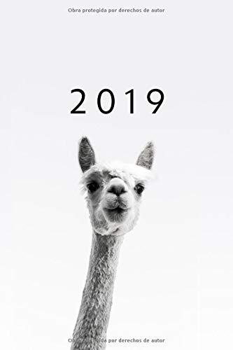 2019 ENE - DIC Agenda Semanal | 152 x 229 mm | 1 Semana en 2 Páginas | 52 Semanas Planificador y Calendario | Alpaca  [Otto Organizador] (Tapa Blanda)