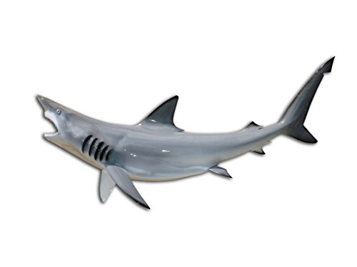 "47"" Grey Blacktip Shark Half Sided Fish Mount Replica, Affordable Coastal Decor - Indoors Or Outside from Mount This Fish Company"