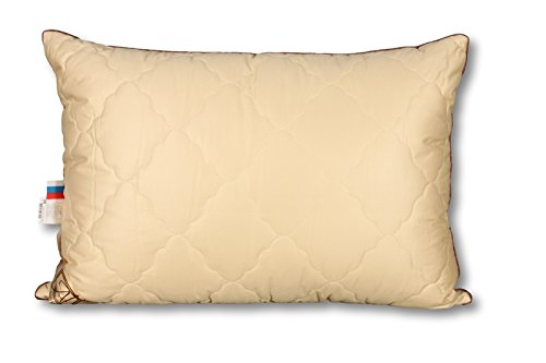 Camel Euro Comforter (Smart And Cozy GOBI Camel Down Bed Pillow (20''x27''))