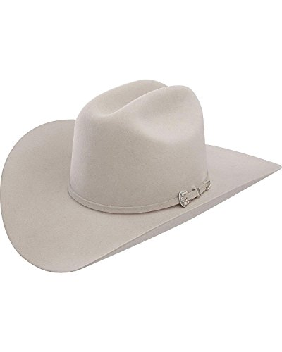 Stetson Men's Skyline Hat, Silver Grey, 7 ()