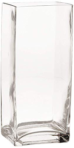 (Rectangle Clear Glass Square Vase, Home Decor and Table Centerpieces Glass Vase (7.9''H x 3.1''W))