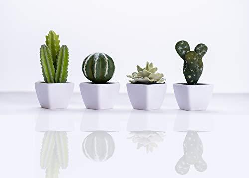 Set of 4 Mini Assorted Cactus Green Artificial Succulent Plants in White Plastic Pots, Small Potted Fake Faux Cacti Foam Succulents Suculentas for Home Decoration as Desk Plant Decor