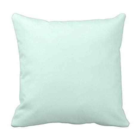 Amazon.com: Lionkin8 Solid Light Mint Green Color Throw ...