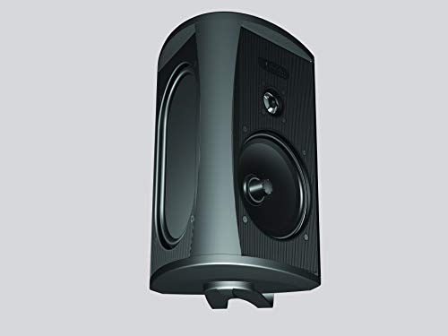 Definitive Technology AW5500 Outdoor Speaker - 5.25-Inch Woofer | 175 Watts | High Performance | Built for Extreme Weather | Single, Black