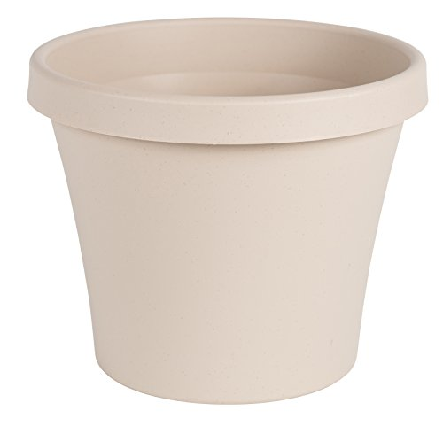 - Bloem Terra Pot Planter 6