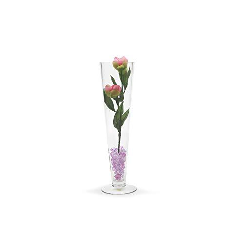 WGV Clear Pilsner Glass Trumpet Vase 4