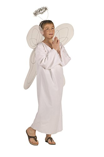 RG Costumes Angel Boy Costume with Halo, Standard/Child Small ()
