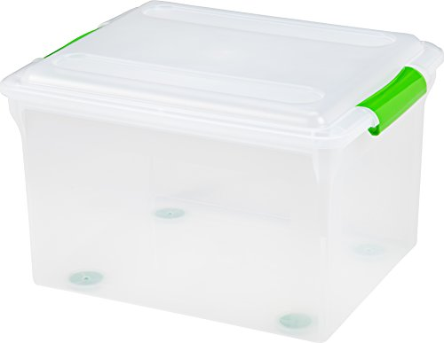 IRIS Quart Store Box Green Handle