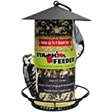 Stackms Feeder Review