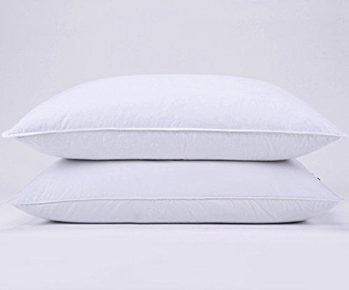 Buy goose down pillow