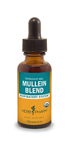 Herb Pharm Certified Organic Mullein Blend Extract for Respiratory System Support - 1 Ounce (Mullein Flower Oil Alcohol)